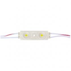 20 Moduli a 2 LED SMD 5050 Bianco freddo IP 65