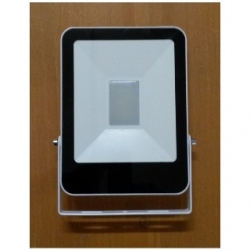 Faro LED da esterno 50 W Bianco Freddo