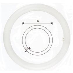 Lampada G10Q circolina  LED Epistar 20 W Bianchi Naturali - 21233